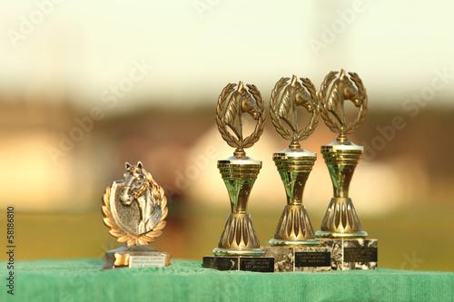 Puchary i nagrody dla zawodników.
