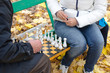 Elderly man a game of chess with woman park bench