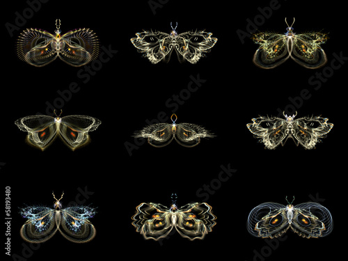 Visualization of Fractal Butterflies