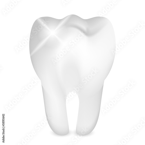 Vector illustration of shiny tooth
