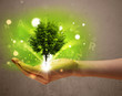 Glowing tree growing in the hand of a woman