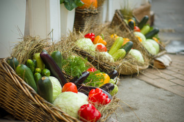 Zuccini, peppers, eggplants and cabbages in basket with straw on