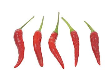 Chilies auf weißem Hintergrund