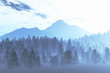Winter Northern Night Illustration