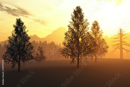 Winter Northern Sunset Sunrise Illustration