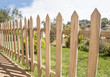 Wooden fence and grass