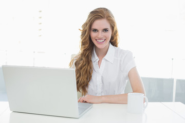 Smiling businesswoman using laptop at office