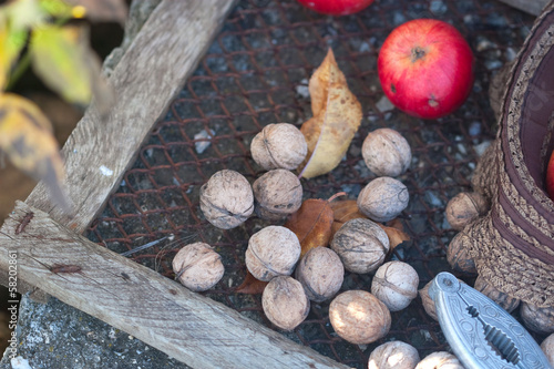 walnuts, nutcracker and leafs
