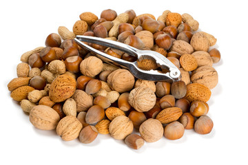 collection of shelled nuts