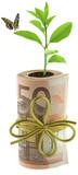 concept écologie, coût protection environnement