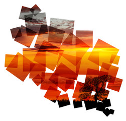 sunset tree collage