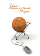 Basketball purchase online