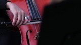 musician play on cello