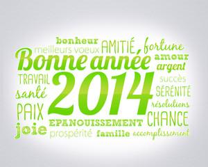 nuage de mots : bonne année 2014 - vert
