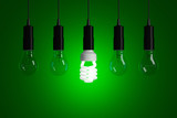 Light bulbs on a green background