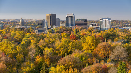 City of trees in full autumn color with the Capital