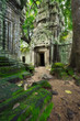 Temple Ta Prohm, Cambodge, Siem Reap