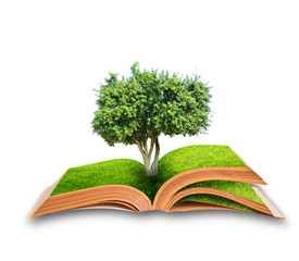 book with tree on green grass field, conceptual idea