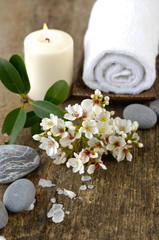 spring flower, candle, roller towel ,stones on old wood