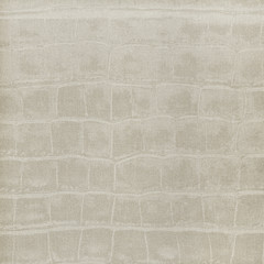 Paper with animal skin texture