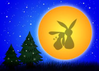 cute rabbits under the moonlight