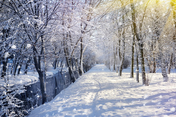 Beautiful winter landscape with the river