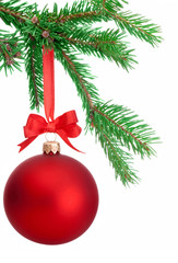 Christmas ball hanging on a fir tree branch Isolated on white ba