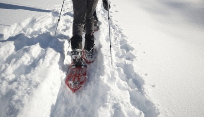 Snowshoeing in powder snow