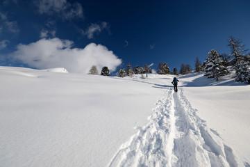 Snowshoeing in powder snow