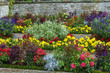 flowerbed in Sanssouci, Germany
