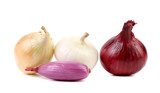 Different types of onion.