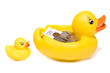 Rubber duck with money