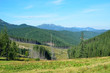 Summer view of the Carpathian Mountains.
