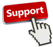Support button and hand cursor