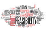 "Word Cloud ""Feasibility"""