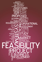 "Word Cloud ""Feasibility"""