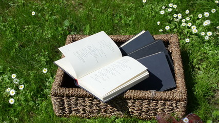 Wicker basket full of books and wind thumb book pages in garden