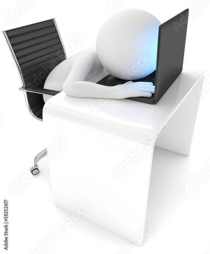 Männchen schläft am Computer