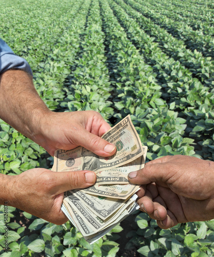 Agriculture concept farmer hands and dollar banknote, soy field
