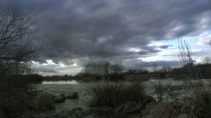 Time-lapse overgrown lake against the sky with clouds
