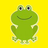 Cute green cartoon frog. White background.