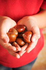 a handful of chestnuts