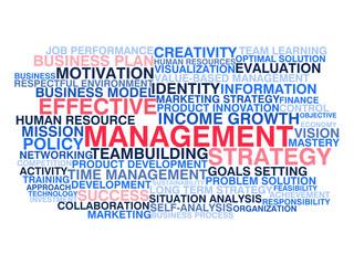 Effective management. Word cloud concept
