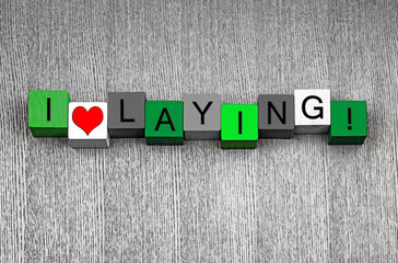 I Love Laying - fun sign for gardening, laying slabs and turf