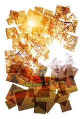 creative autumn collage