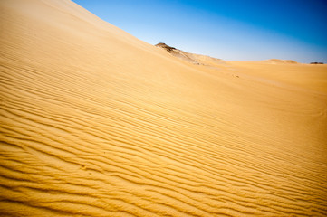 Beautiful sand dune in the desert of Egypt