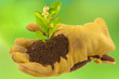 concept écologie, protection de l'environnement