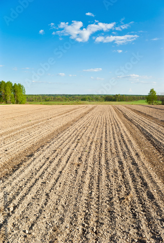 Furrows on a  spring field