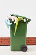 Toys in litter bin
