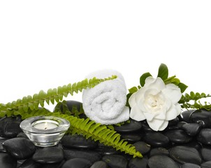 green fern and gardenia flowers, candle on black stones